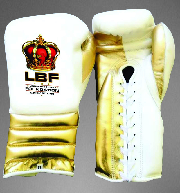 LBF Boxing gloves